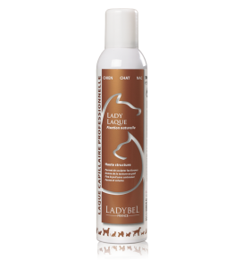 LADY LAQUE Haarspray