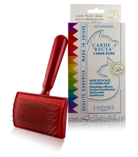 CARDE RECTA Professional Brush