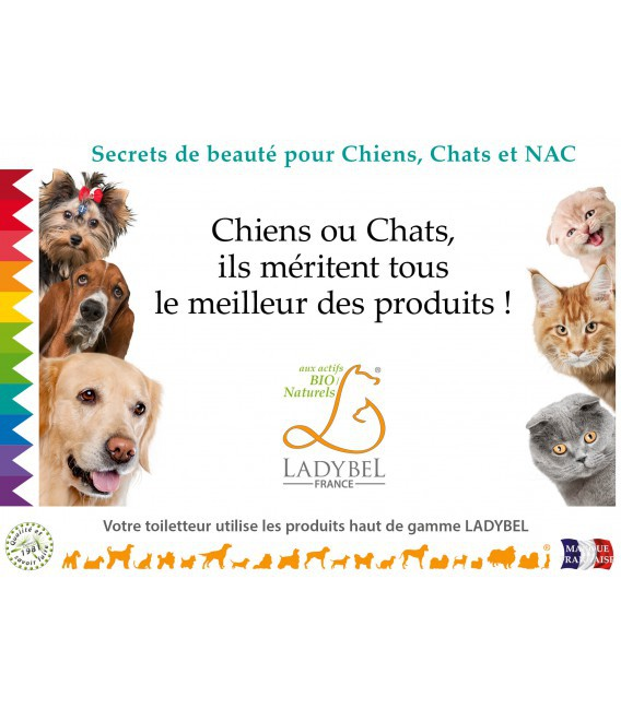 CHEVALET DE COMPTOIR Werbung Hund Katze