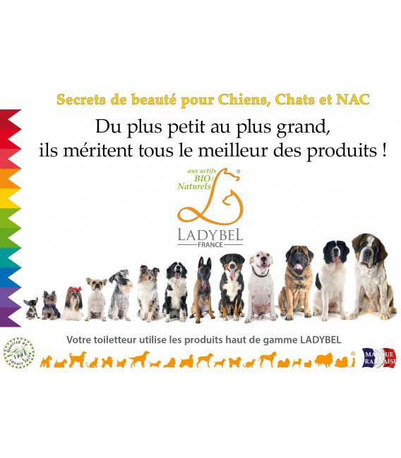 CHEVALET DE COMPTOIR Advertisment Dog