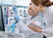 Ladybel - Innovations et recherches